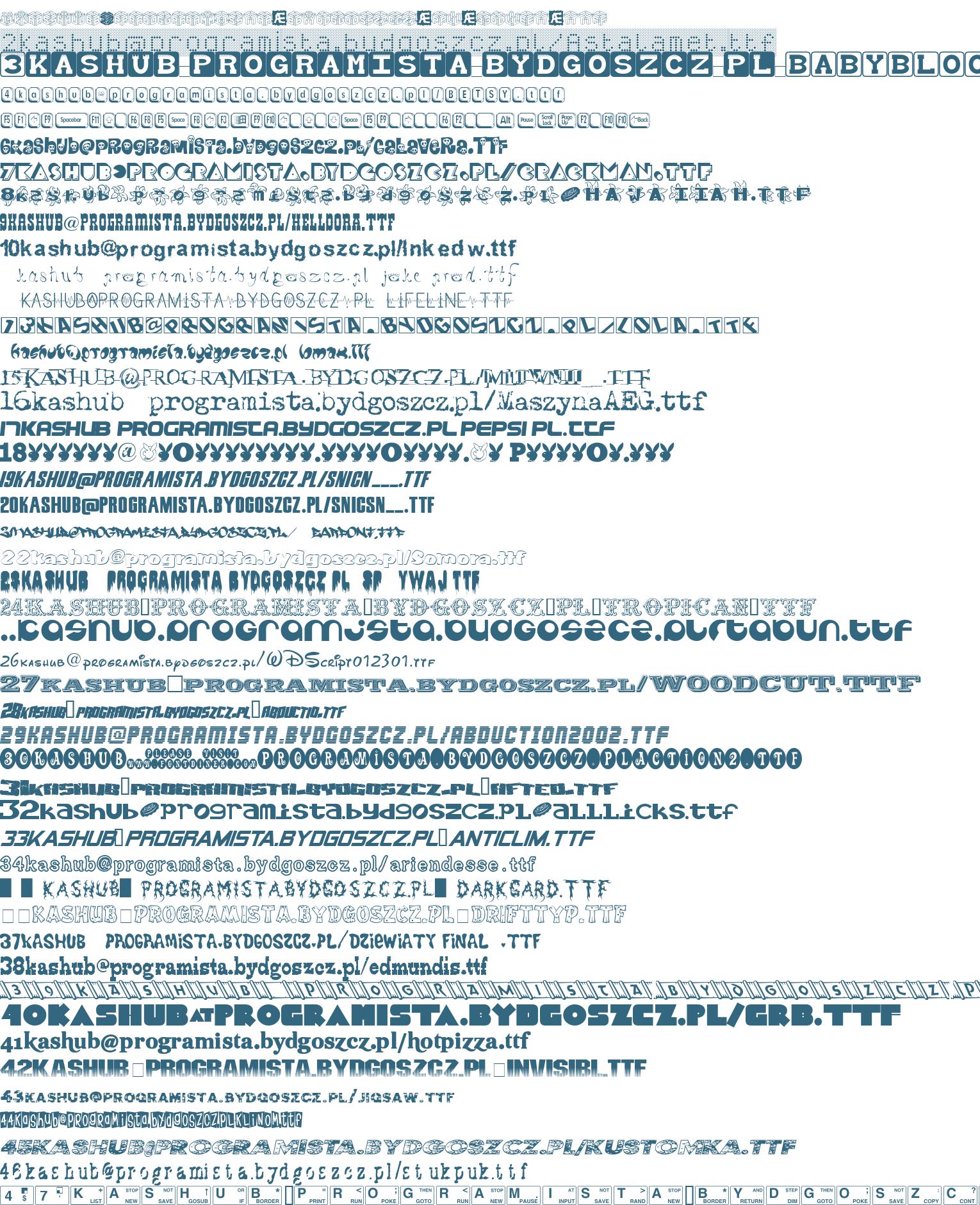 kashub na serwerze programista kropka bydgoszcz kropka pl